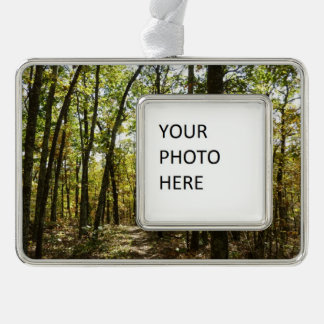 Appalachian Trail in October at Shenandoah Silver Plated Framed Ornament