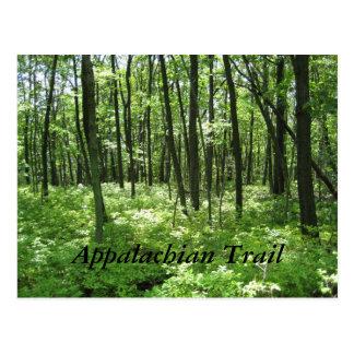 Appalachian Trail Postcard