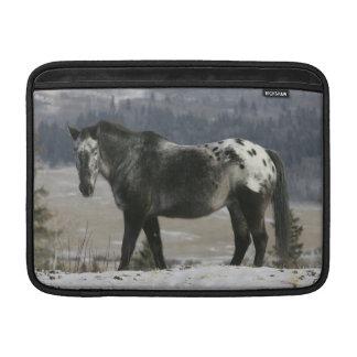 Appaloosa Horse in the Snow MacBook Sleeves