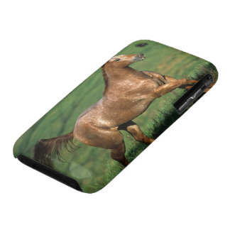 Appaloosa Horse Running in Grassy Field Case-Mate iPhone 3 Cases