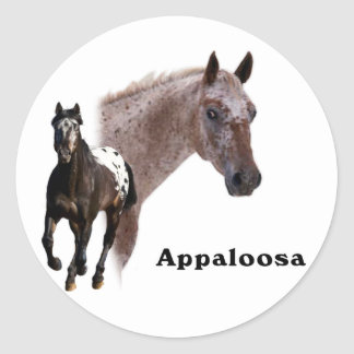 Appaloosa Horse Round Stickers