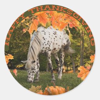 Appaloosa Thanksgiving Classic Round Sticker