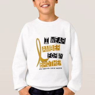 APPENDIX CANCER I Wear Amber For My Brother 37 Sweatshirt