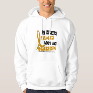 APPENDIX CANCER I Wear Amber For My Girlfriend 37 Hooded Pullover