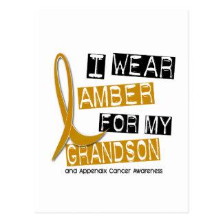 APPENDIX CANCER I Wear Amber For My Grandson 37 Postcard
