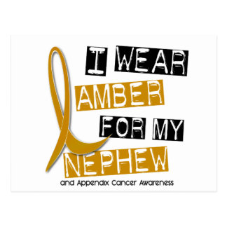APPENDIX CANCER I Wear Amber For My Nephew 37 Postcard