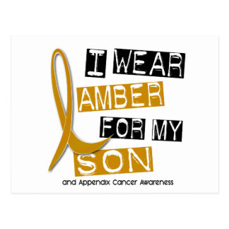 APPENDIX CANCER I Wear Amber For My Son 37 Postcard