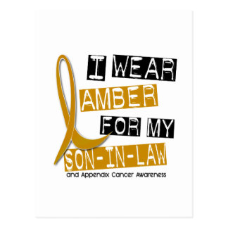 APPENDIX CANCER I Wear Amber For My Son-In-Law 37 Postcard