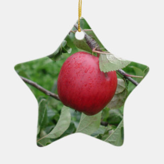 Apple and Leaves Ceramic Star Decoration
