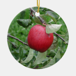 Apple and Leaves Christmas Ornament