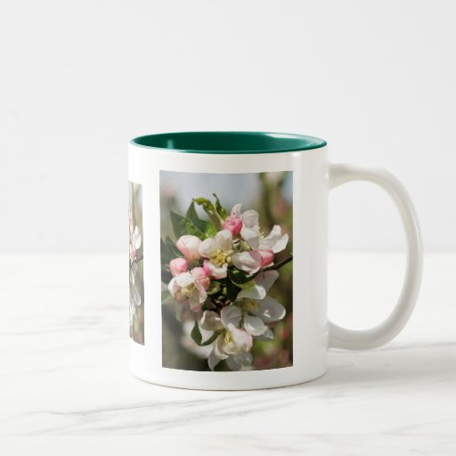 Apple blossom - a touch of spring Two-Tone mug