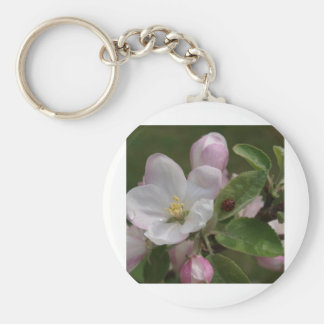 apple blossom and a lady bug basic round button key ring