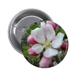 Apple Blossom 6 Cm Round Badge