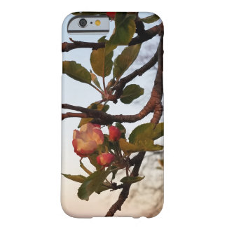 Apple Blossom Barely There iPhone 6 Case