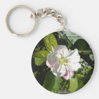 Apple blossom basic round button key ring