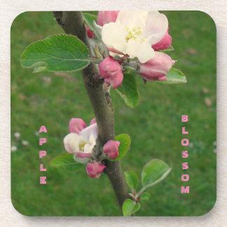 Apple Blossom Coaster