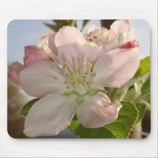 Apple Blossom Macro Mouse Mat