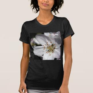 Apple Blossom T Shirt