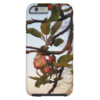 Apple Blossom Tough iPhone 6 Case