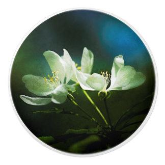 Apple Blossom - Two Flowers Ceramic Knob