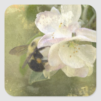 Apple Blossoms and Bumblebee Square Sticker