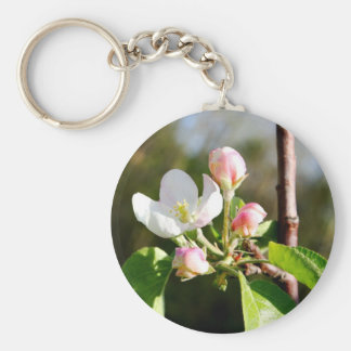 Apple Blossoms Keychain