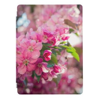 Apple Blossoms Photography iPad Pro Cover