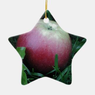 Apple Closeup Ceramic Star Decoration