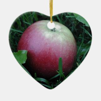 Apple Closeup Christmas Ornament