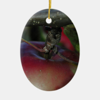 Apple Hanging From a Branch Ceramic Oval Decoration