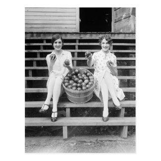 Apple Harvest Girls, 1927 Postcard