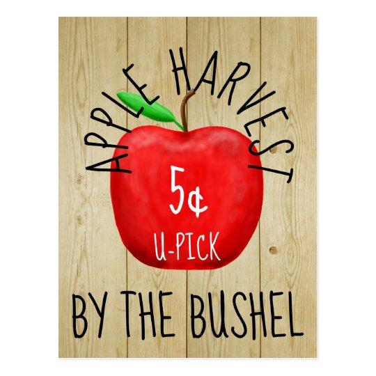 Apple Harvest Vintage Sign Postcard