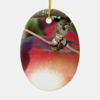 Apple in a Tree Close-up Ceramic Oval Decoration