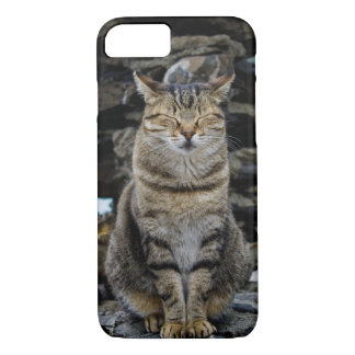 Apple iPhone 7 Case with Italian Cat