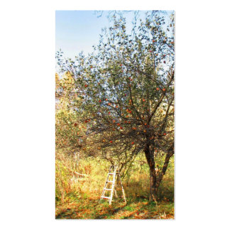 Apple Orchard Double-Sided Standard Business Cards (Pack Of 100)