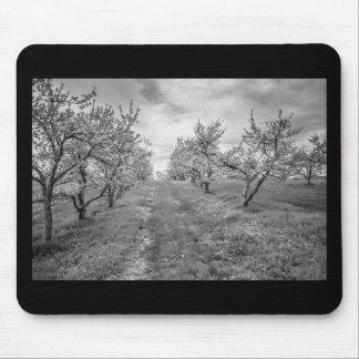 Apple Orchard in Spring Mouse Mat