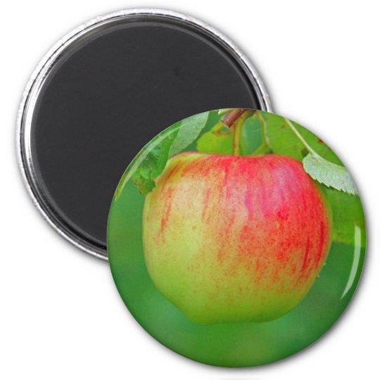 Apple Redfree 6 Cm Round Magnet