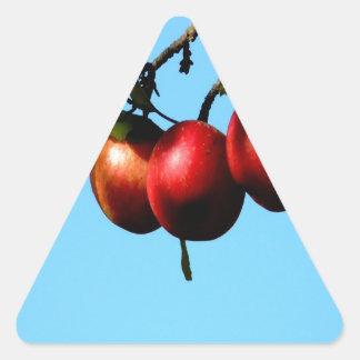 apple success harvest autumn triangle stickers