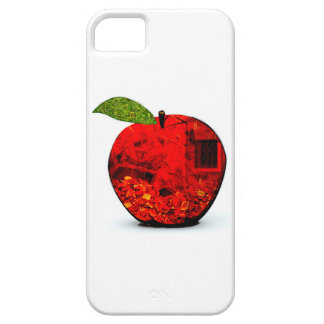 Apple Today iPhone 5 Cases