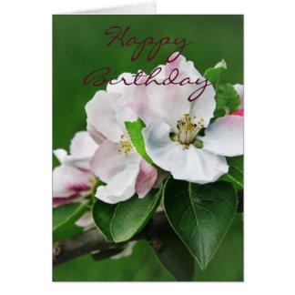 Apple Tree Blossom Card