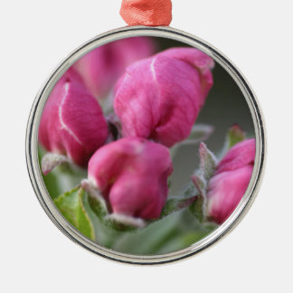 Apple Tree Blossoms Buds Christmas Ornament