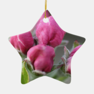 Apple Tree Blossoms Buds Christmas Ornament