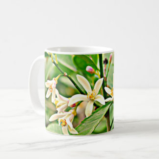 Apple Tree Blossoms Classic Coffee Cup