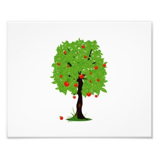 apple tree ecology design.png photograph