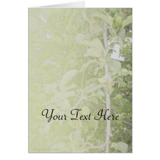 Apple Tree Green Greeting Cards