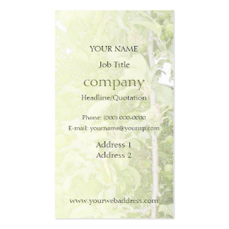 Apple Tree Green Profile Card Business Card Templates