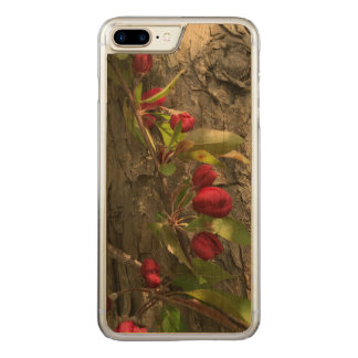 Apple Tree on iPhone 7S natural cherry wood case