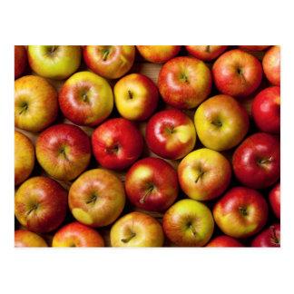 Apples Background Postcard