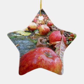 Apples Ceramic Star Decoration