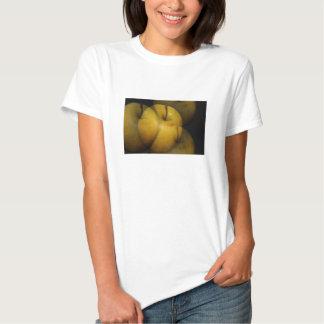 Apples Illusions Women's Shirt